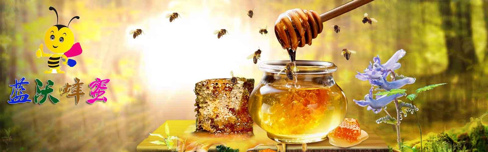黑龙江黑蜂蜂蜜东北椴树蜜就找蓝沃蜂蜜生产批发商