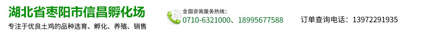 枣阳市信昌鸡苗养殖批发