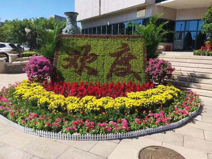 花卉短期租赁