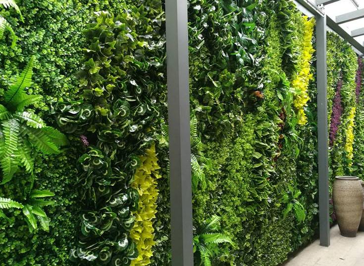 自然植物墙