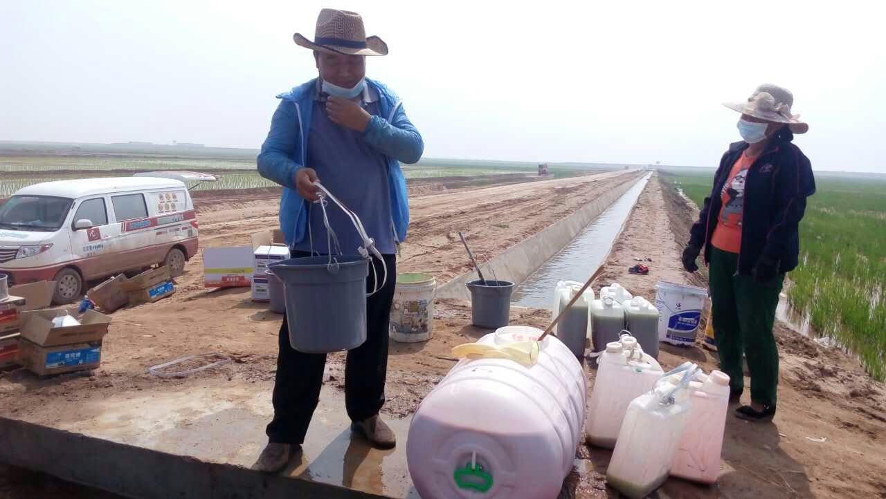 生物有机肥施肥方法