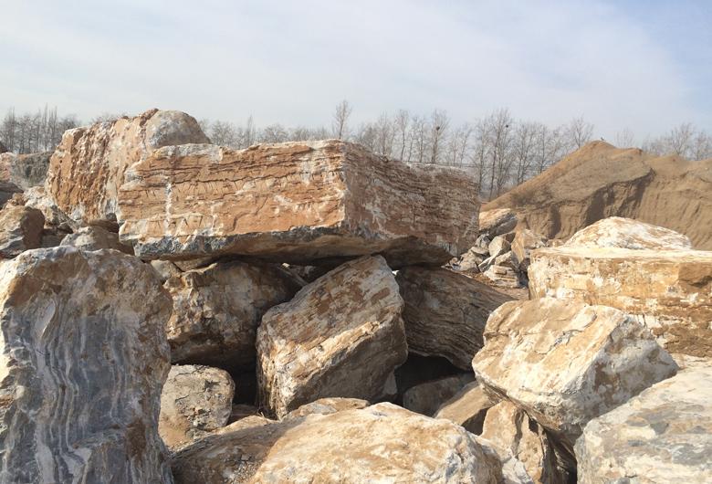 千层石及假山