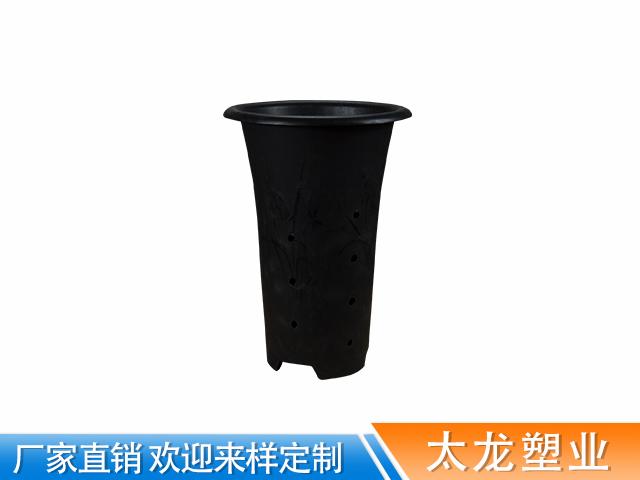 塑料兰花盆