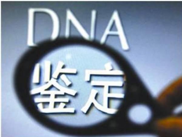 绵阳三台DNA亲子鉴定可以用什么样本