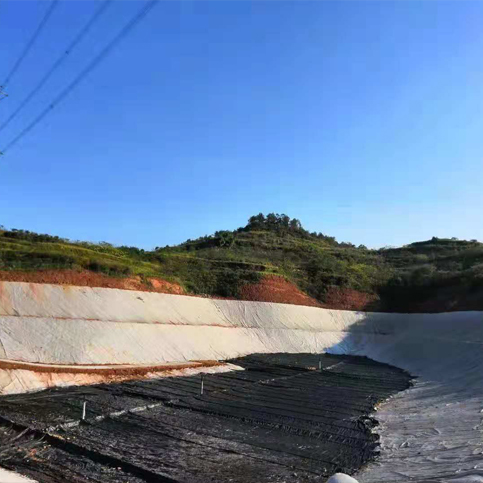 南溪垃圾固废填埋场防渗