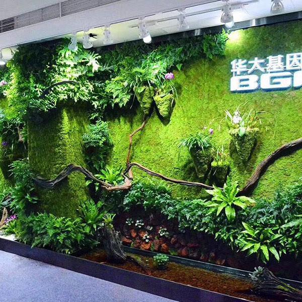写字楼植物墙