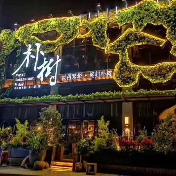 艺美达制作各种仿真植物,仿真植物墙,仿真树,仿真绿雕等,承接甘青宁大型仿真植物景观工程设计与施工。