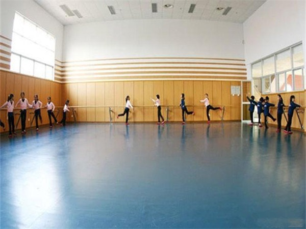 成都舞蹈室PVC塑胶地板厂家