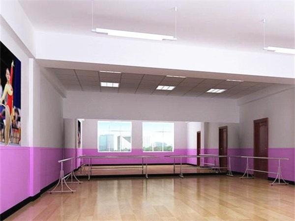 成都舞蹈室PVC塑胶地板批发