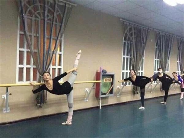成都舞蹈室PVC塑胶地板批发厂家