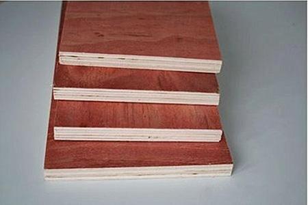 建筑松木红模板