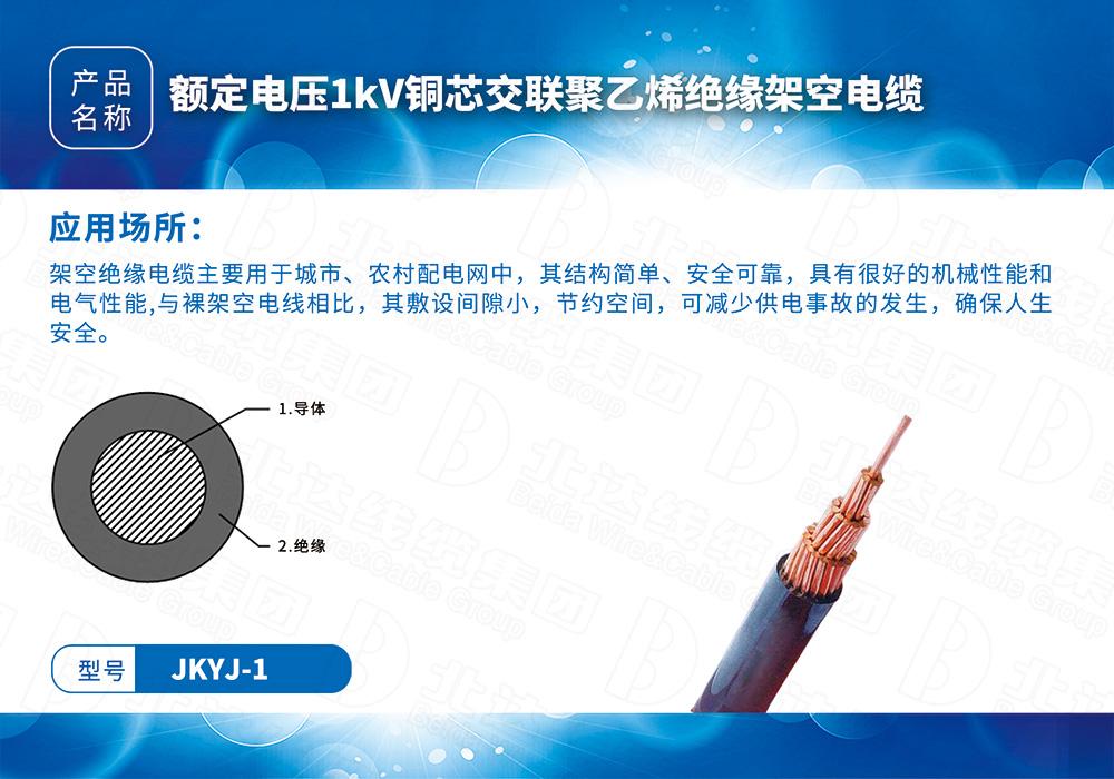 中低压电缆系列JKYJ-1