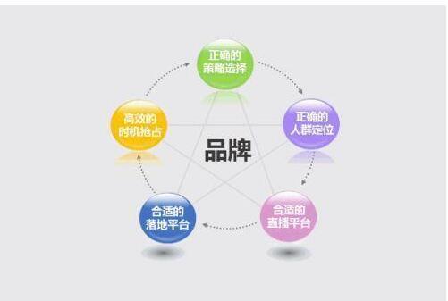 企业品牌推广&网站优化,如鱼…