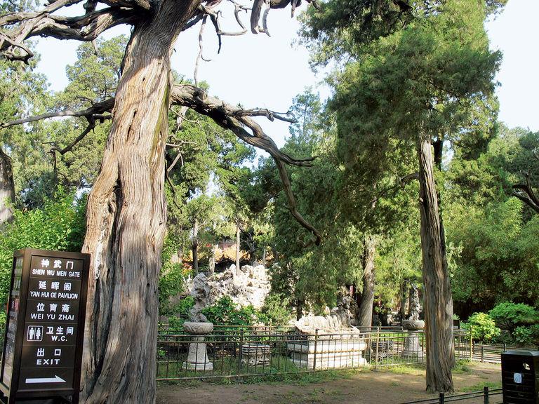 紫禁城内御花园景观