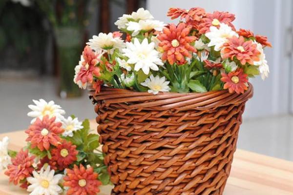 南阳室内花艺软装在色彩上的搭配分享