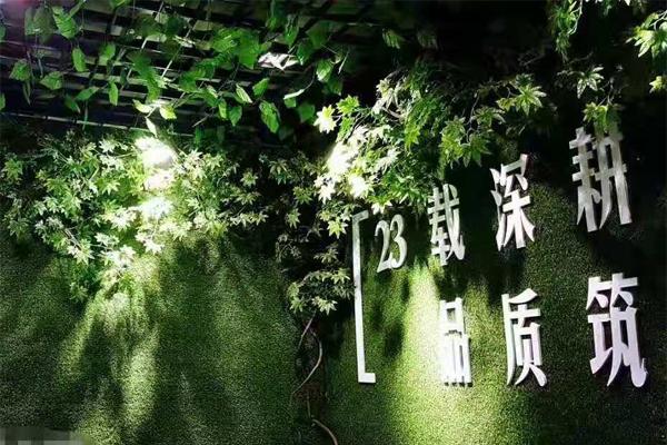 设计植物墙时,有什么是要注意…