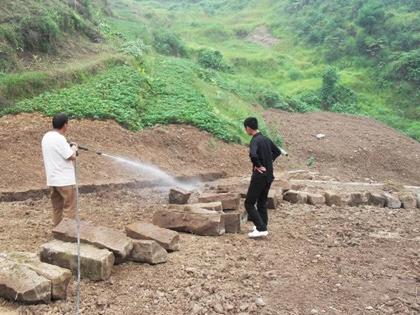 重庆有害生物防制