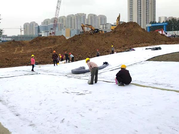 四川人工湖土工膜施工