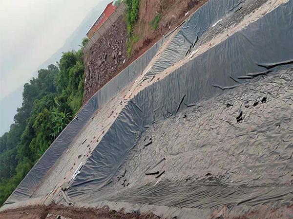 成都养殖场用土工膜