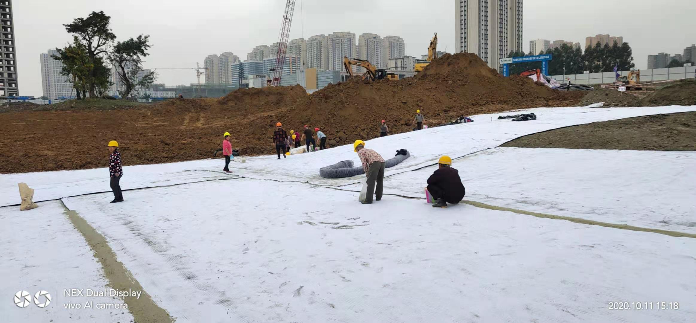 四川人工湖膨润土防水毯,成都人工湖膨润土防水毯