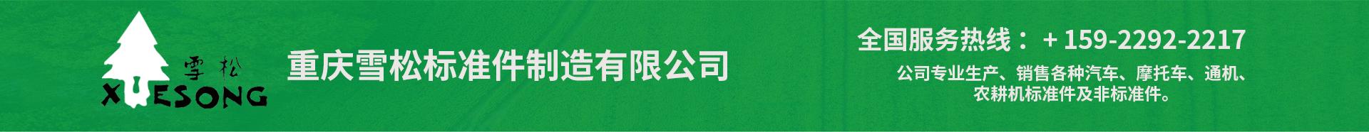 重庆雪松标准件制造有限公司