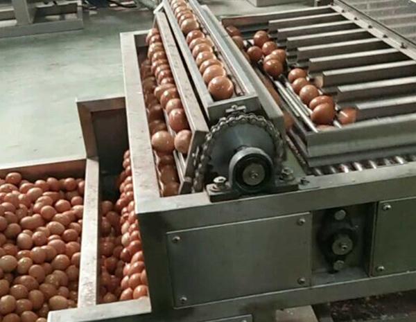 鸡蛋剥壳机厂家