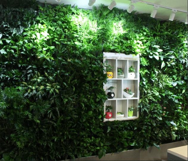 成都垂直綠化設計公司介紹:室內植物墻的設計有什么優勢
