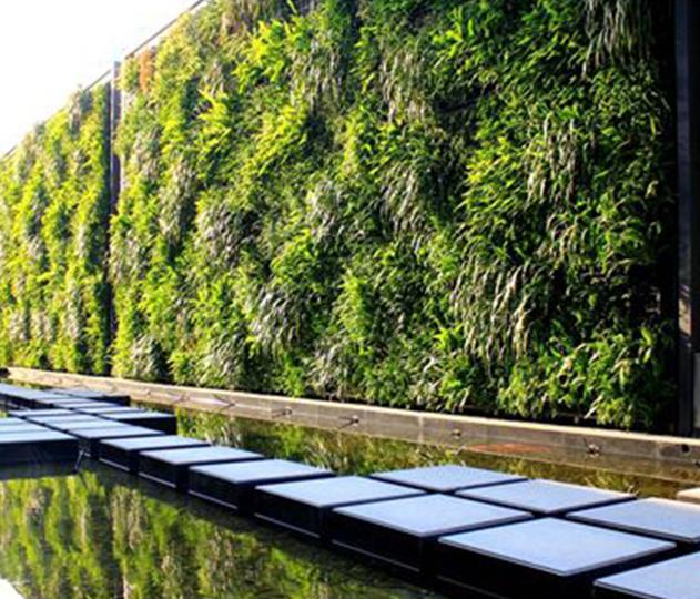 成都垂直绿化设计工程公司分享:垂直绿化有哪些类型?