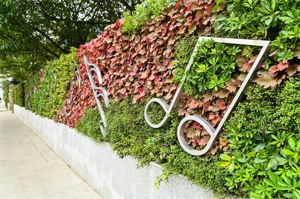 成都植物墙设计