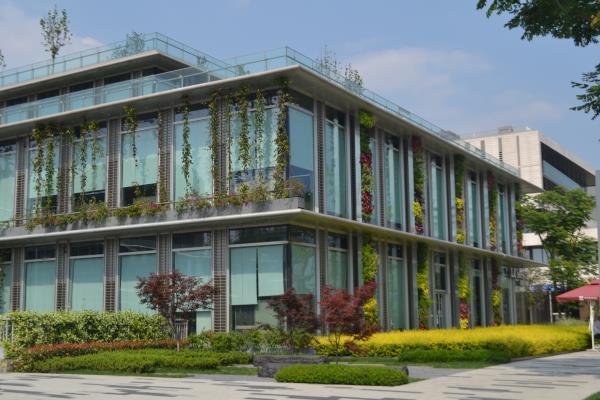 成都屋顶绿化设计公司分享:屋顶绿化的优缺点