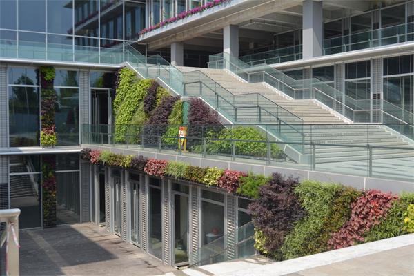 立体垂直绿化的好处有哪些?成都立体垂直绿化公司带你了解