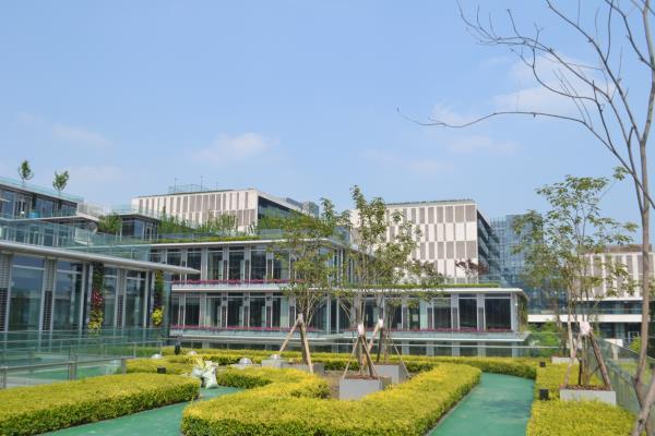 成都屋頂綠化設計工程公司淺談:屋頂綠化設計要注意哪些方面