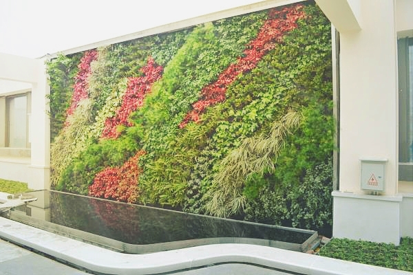 成都垂直绿化设计