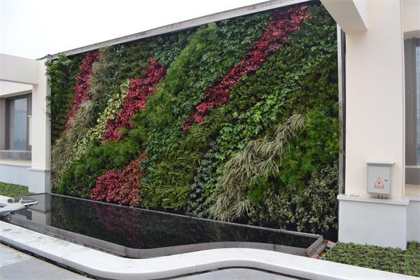 成都立体绿化设计