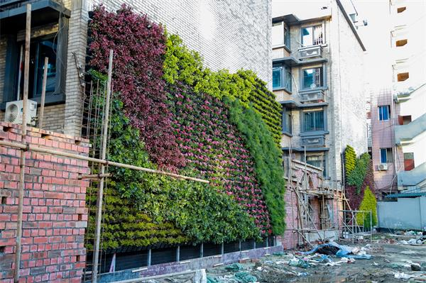 成都立体绿化