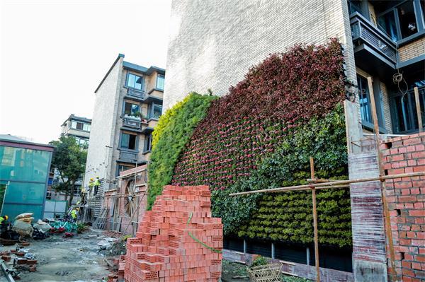 成都城市立体绿化