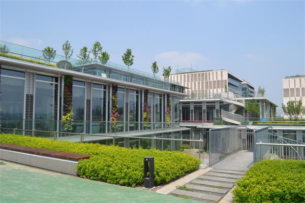 成都屋顶绿化公司