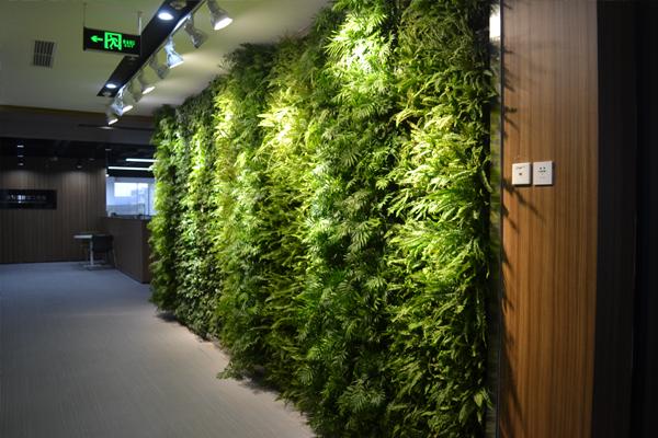 成都植物墙公司