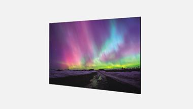 双面平面OLED 55EH5C