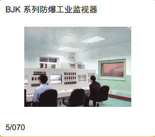 BJK系列防爆工业监视器