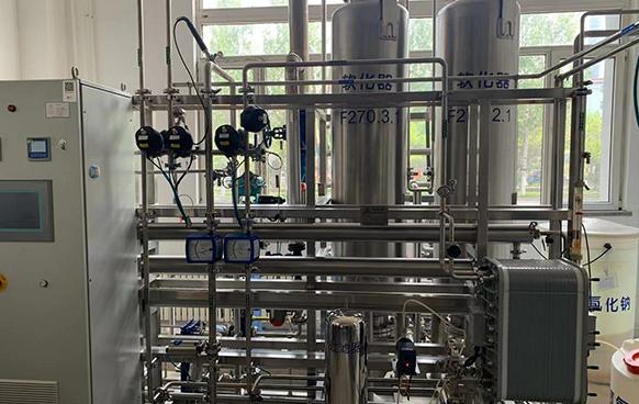 东北制药2T每小时纯化水系统