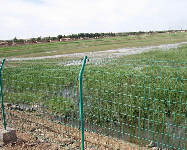 畜牧围栏网