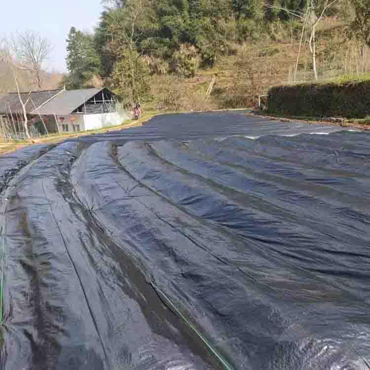 在绿化工程中防草布的作用有哪些?