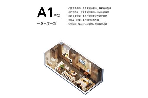 一室一厅一卫