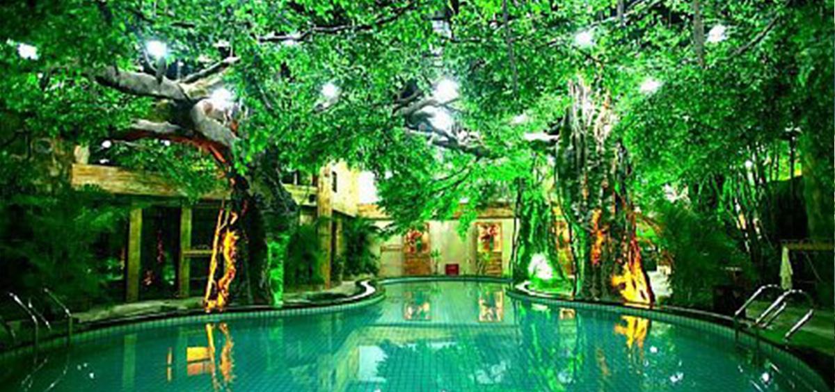 植物墙绿化