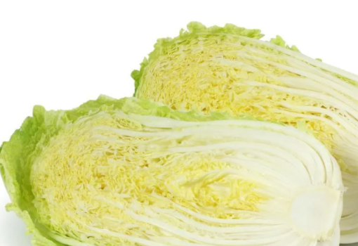 白菜种植,帮叶上出现很多的小黑点,应该怎样进行防治呢