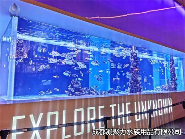 重庆鱼缸定制厂家浅谈:制作大型鱼缸对材料的要求