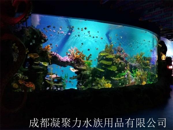 大型观赏鱼缸制作