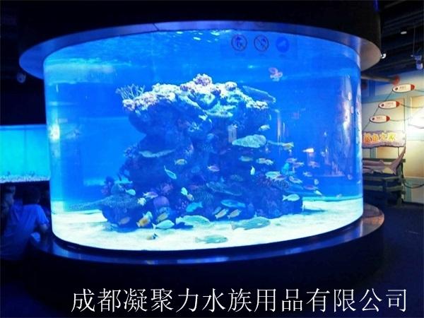 重庆亚克力鱼缸