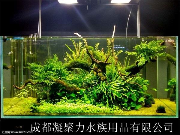 重庆水草缸定做厂家